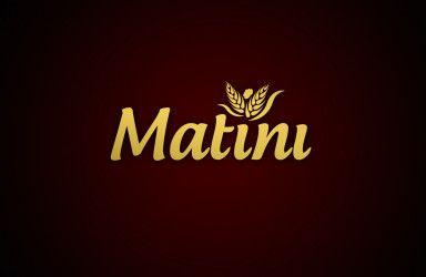 MATINI_logo_3